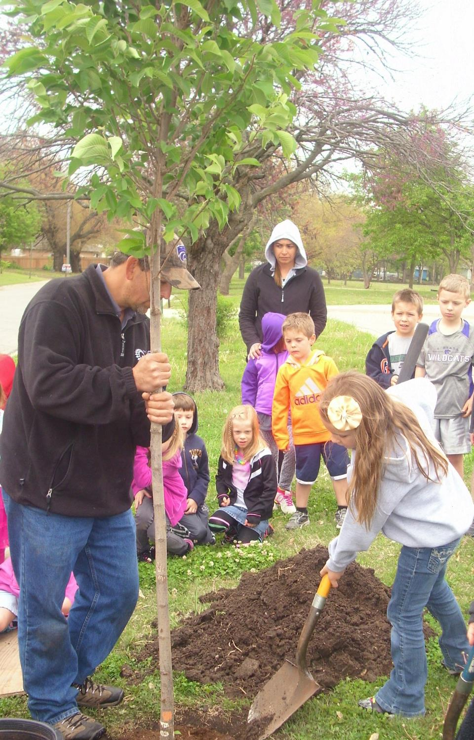 plant tree, Arbor Day 2015, Sunset Elementary